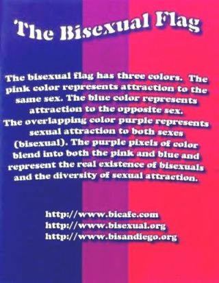 The Bisexual Flag-v